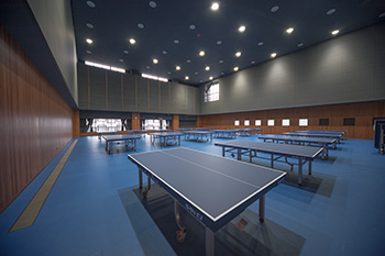 Sports Hall 3 (table tennis)